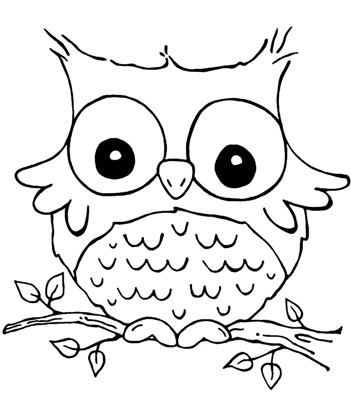 Easy Cute Owl Drawing at GetDrawings | Free download