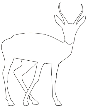300x360 How To Draw A Gazelle