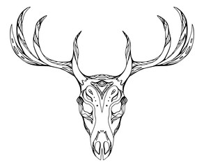 293x240 Search Photos Deer Head