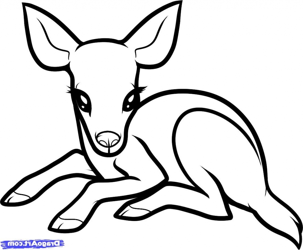 1024x845 Simple Drawing Of A Baby How To Draw A Ba Deer Ba Deer Step Step