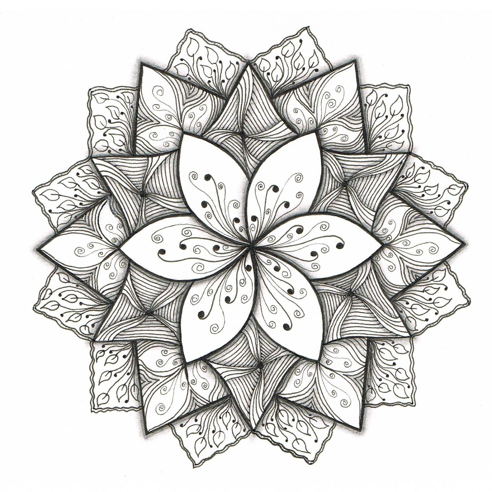 1600x1598 Simple And Easy Designs Draw On Paper Simple Flower Designs