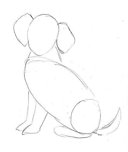 Easy Dog Drawing Steps
