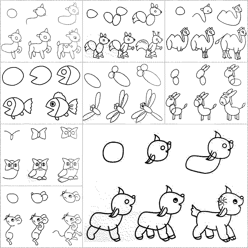 802x802 How To Draw Easy Animal Figures In Simple Steps