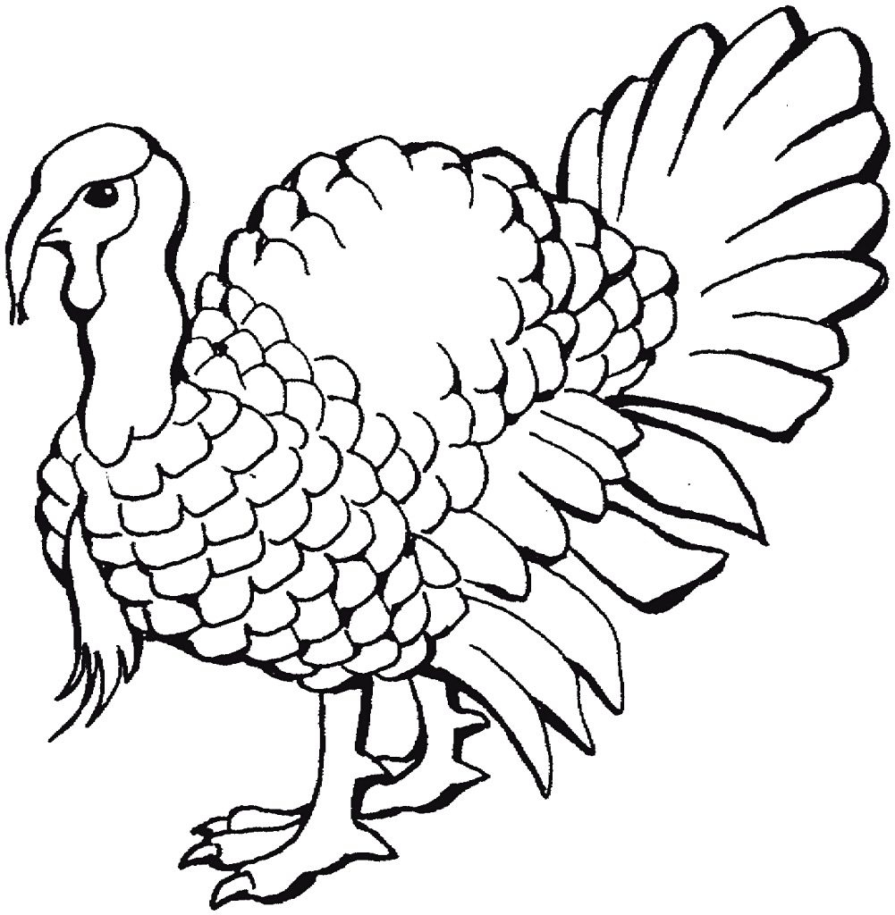1001x1024 Simple Drawing Of Turkey Simple Turkey Drawing How To Draw