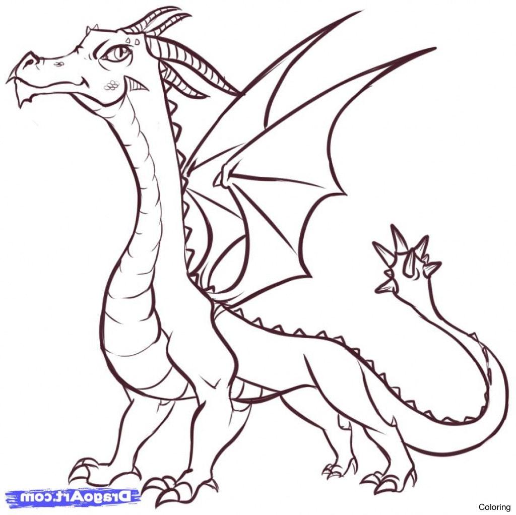 Simple Dragon Color Pages
