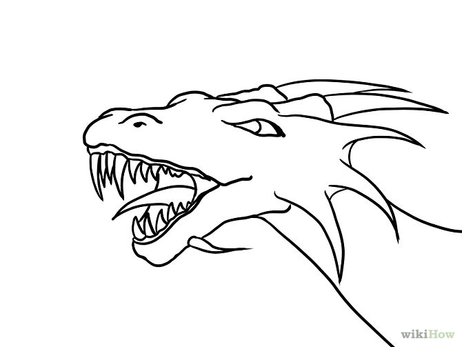 670x503 drawn water dragon simple
