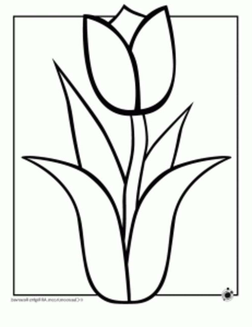 Easy Line Drawing Of Flowers : Easy drawing flowers at getdrawings free for
