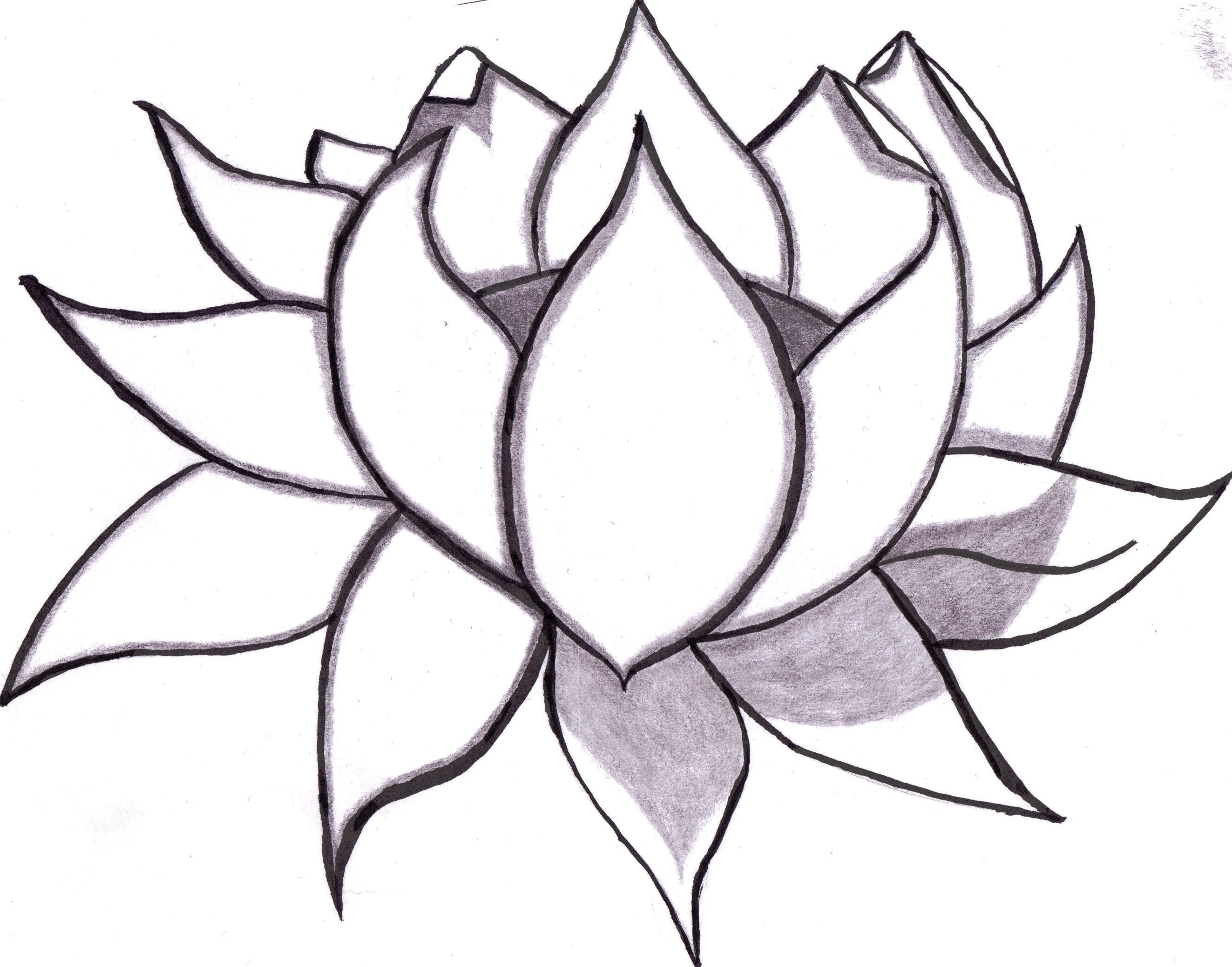 2646x2077 Easy Drawing Flowers Search Results For Easy Drawings Page 7 Best