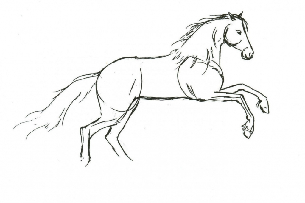 1024x682 easy horse drawing how to draw a horse how to draw horses horse