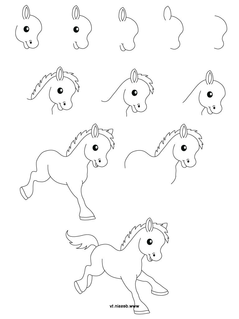Easy Drawing Ideas For Beginners Step By Step Animals at ...