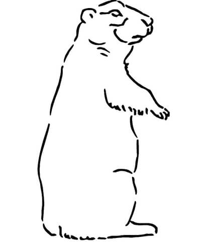 400x480 Prairie Dog Coloring Page Free Printable Pages