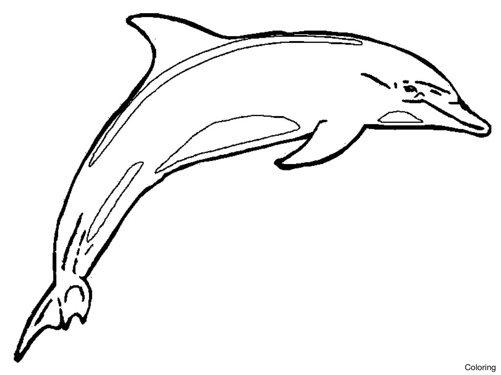 Easy Drawing Of A Dolphin at GetDrawings.com | Free for personal use ...