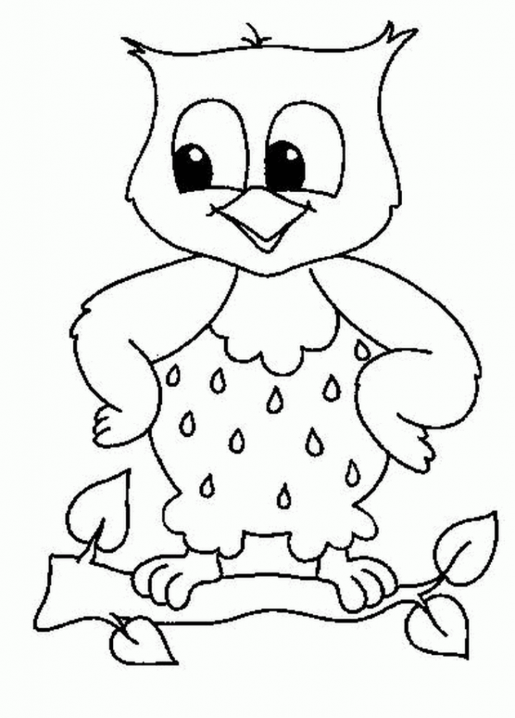 Easy Drawing Of An Owl