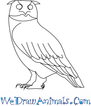 300x350 How To Draw A Eurasian Eagle Owl