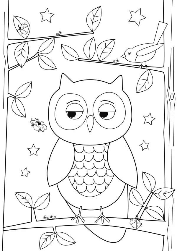 600x849 Simple Owl Drawing For Kids