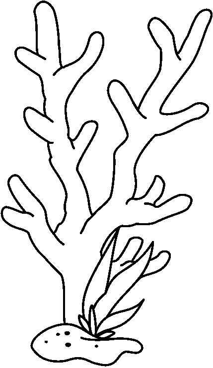 Easy Drawing Of Coral Reef