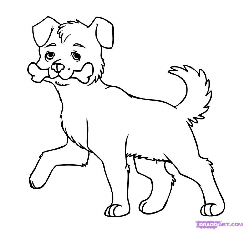1024x969 How Do You Draw Dogs Ba Dog Pets And Animals Easy Drawing How
