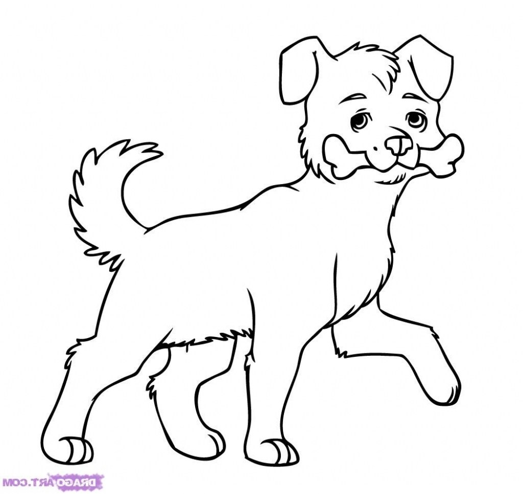 1024x969 How Draw A Dog Easy How