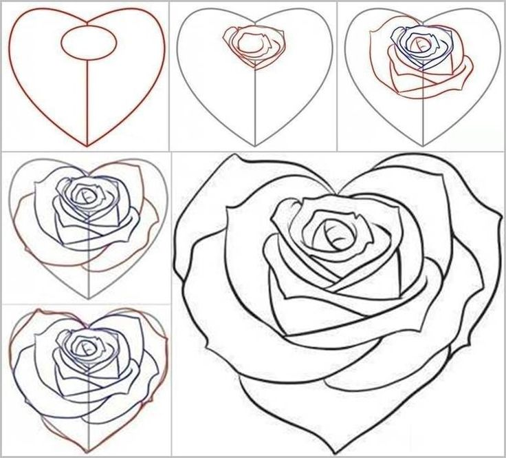 736x665 Heart And Rose Drawings In Pencil Group