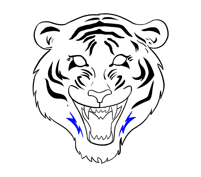 678x600 Gallery Draw Easy Tiger Face,