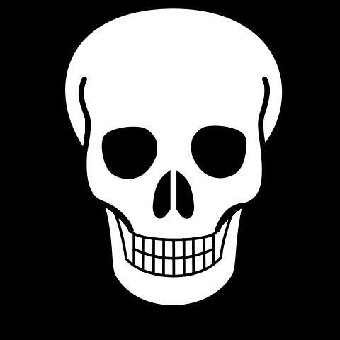 480x480 Simple Skull Drawings Free Download Clip Art Free Clip Art Easy