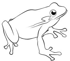 236x206 How To Draw A Frog Frog Drawing, Frogs And Frog Art