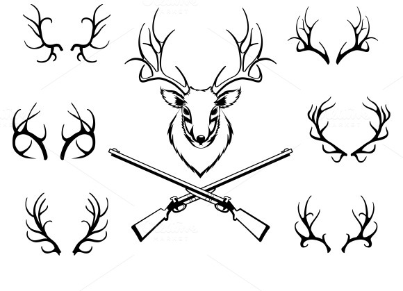 580x419 Set Of Antlers With Trophy And Guns Antlers And Guns