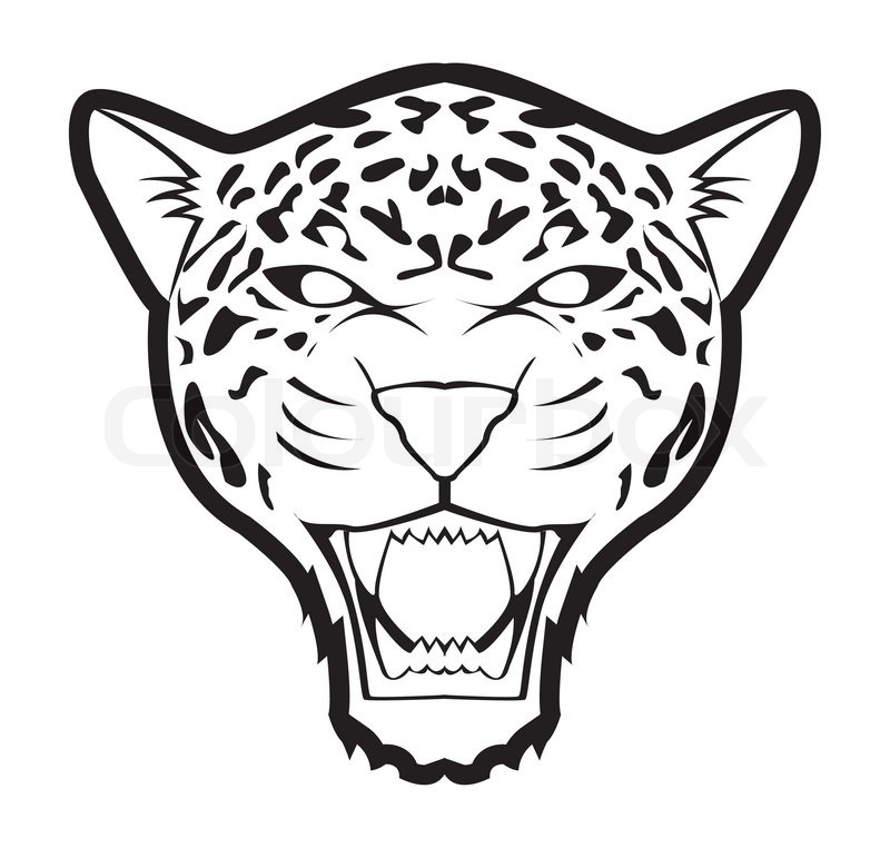 800x762 Cartoon Jaguar Drawings Jaguar Mascot Drawings