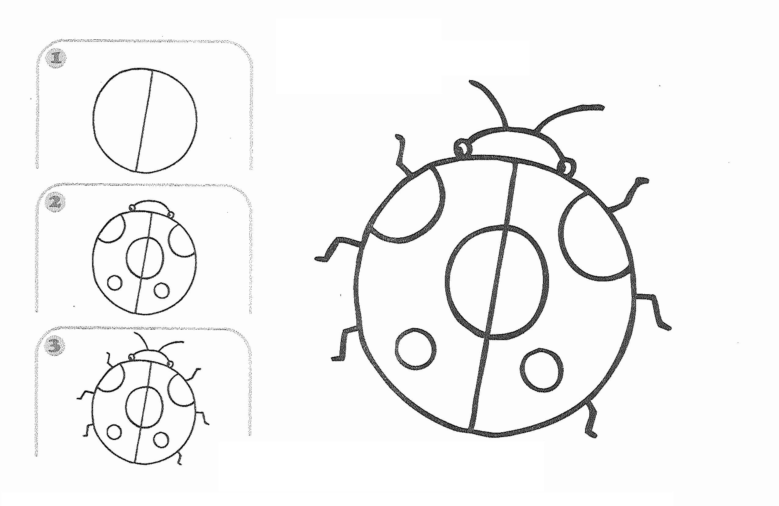 2550x1656 Free Learn Draw Cartoon Ladybug Page,free Printable Kids Step By