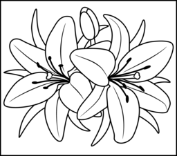 256x226 Gigantic Lily Coloring Pages Flowers