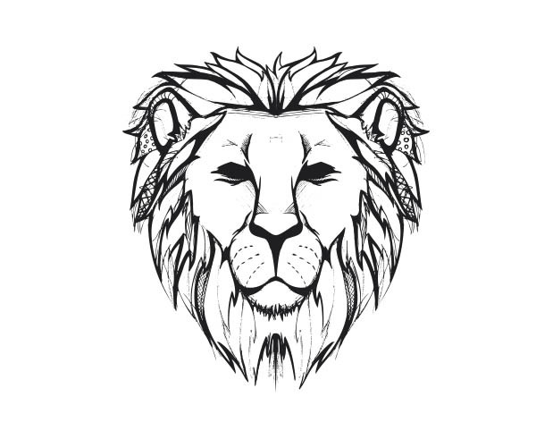 600x472 gallery drawings of a lion face