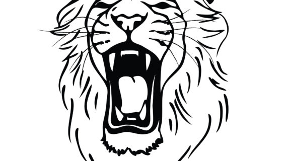 570x320 simple lion face drawing lion roaring drawing clipart panda