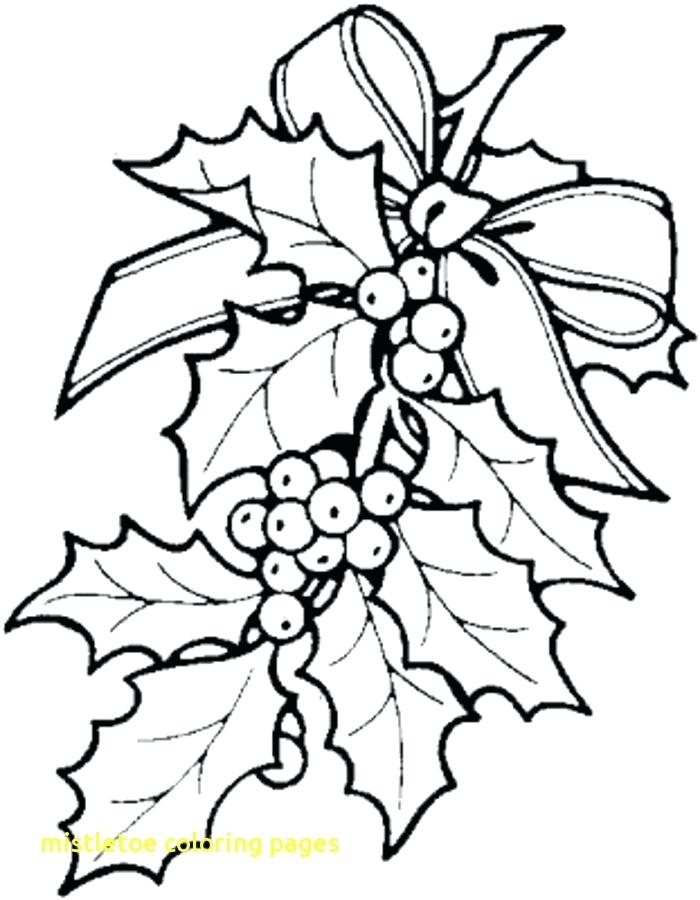 700x900 Mistletoe Coloring Page Clip Arts Related To Mistletoe Coloring