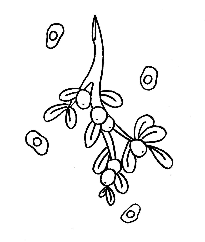 1271x1500 Mistletoe And Mono The Holidays For Micro Nerds Mistletoe