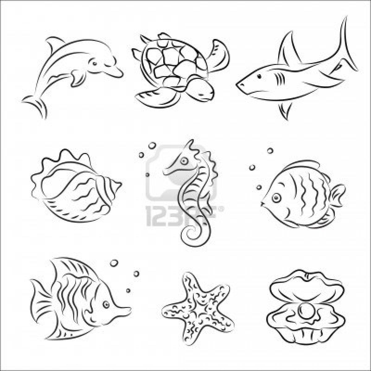 1200x1200 Sea Animals Drawing Easy Sea Animals To Draw Cute Sea Animals