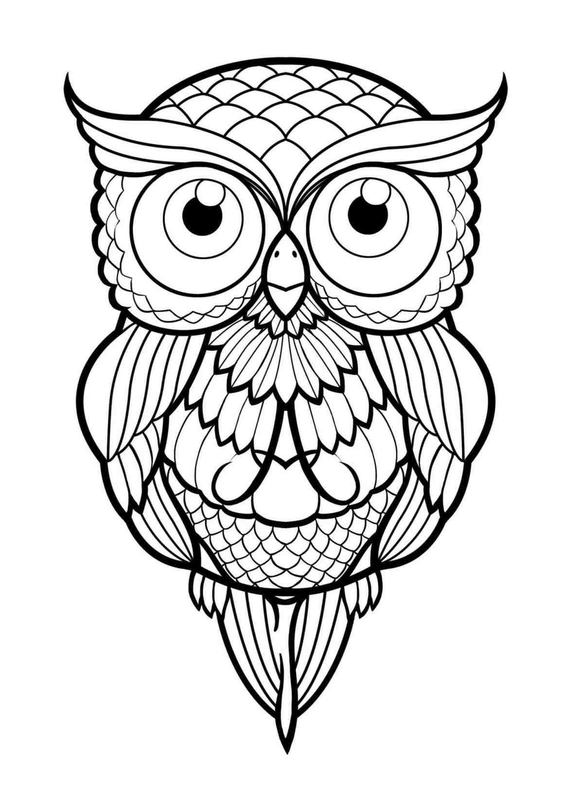 Easy Owl Drawing at GetDrawings.com | Free for personal use Easy Owl ...