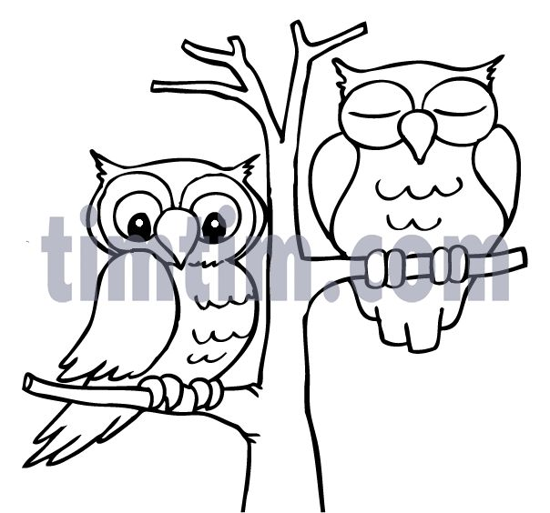 604x564 Drawn Owl Tree Drawing