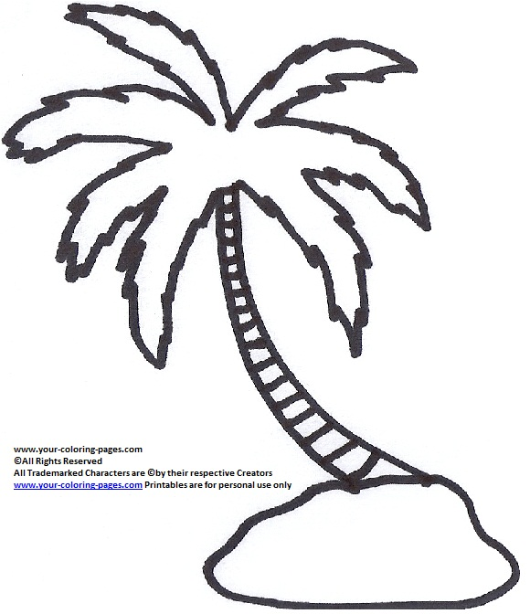 580x672 Astounding Palm Tree Coloring Page 20 With Additional Download