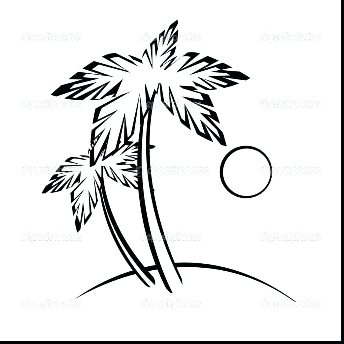 1126x1126 Coloring Palm Tree Coloring Pages