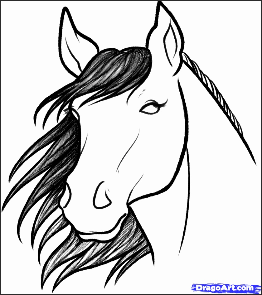 840x946 Easy Drawing Of A Horse U2fsb Unique Easy Horse Drawings In Pencil
