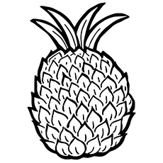 Easy Pineapple Drawing