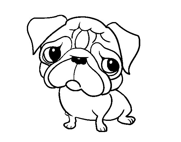 Easy Pug Drawing at GetDrawings.com | Free for personal use Easy Pug ...