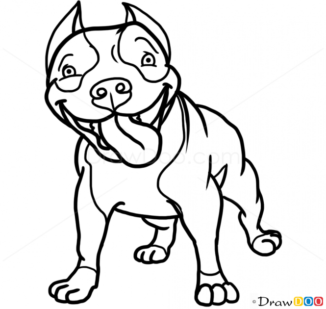 665x630 How To Draw Cute Pit Bull, Dogs And Puppies Pit Bull Mix