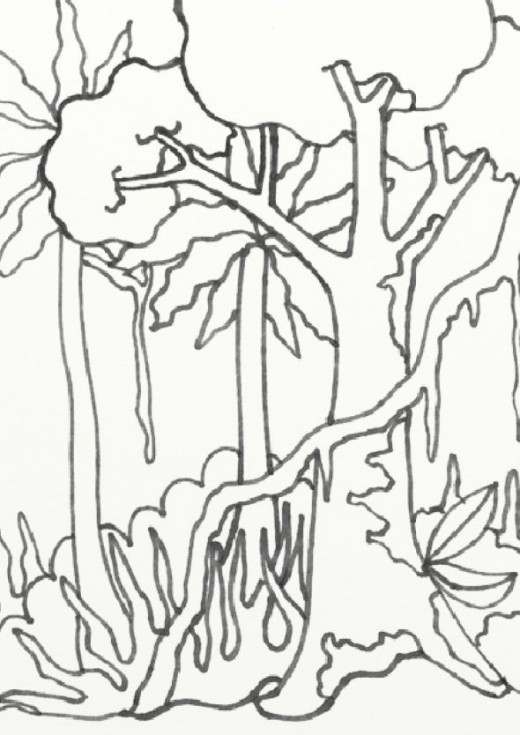 520x735 Drawn rainforest jungle scenery