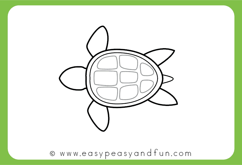 798x545 how to draw a turtle