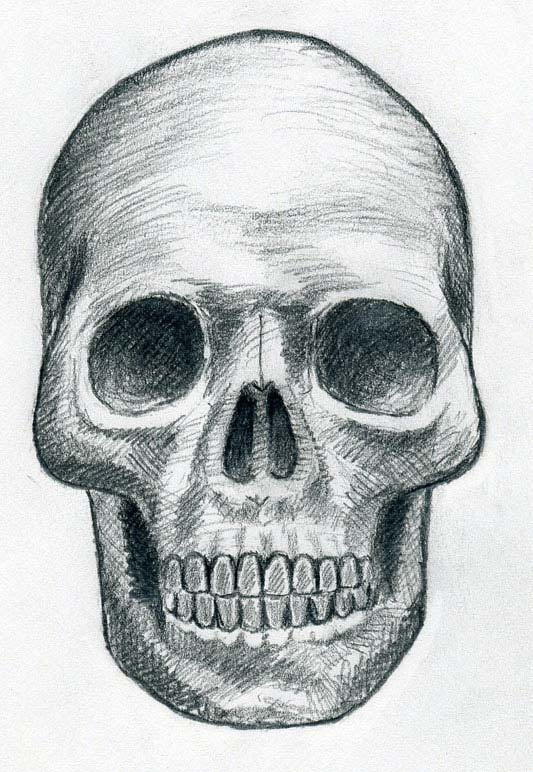 533x772 Draw Skulls Can Be This Easy