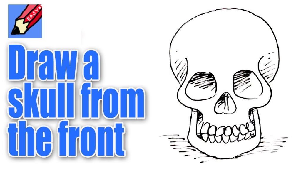 1024x576 Easy Skull Drawings How To Draw A Skull From The Front Real Easy