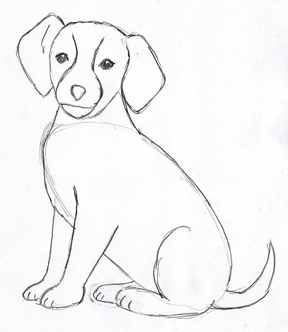 Easy Step By Step Dog Drawing at GetDrawings com | Free for