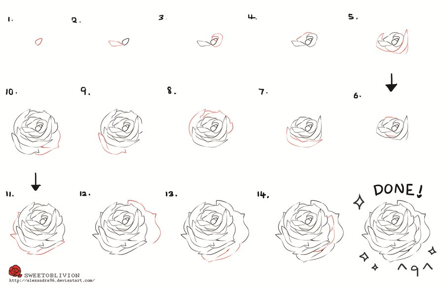 Easy Step By Step Drawing Of A Rose At Getdrawings Com Free For