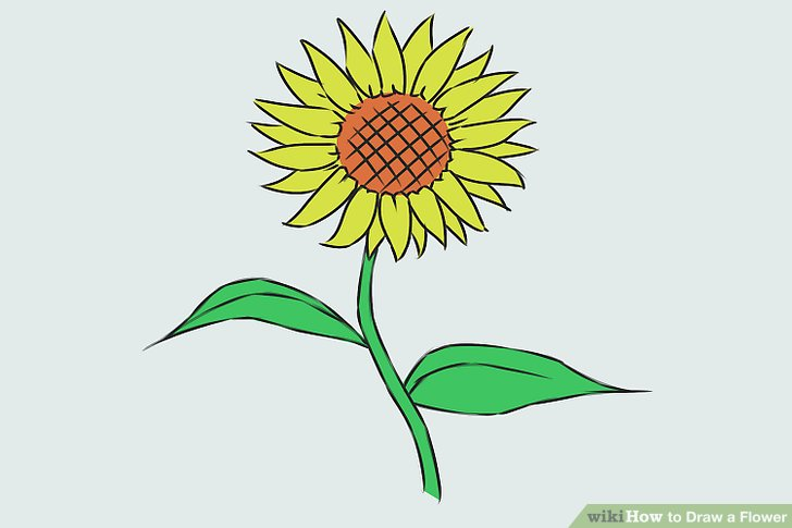 Easy Sunflower Drawing